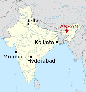Resistance Against Displacement Assam